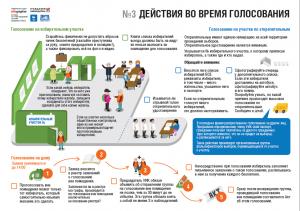 Выборы: действия во время голосования