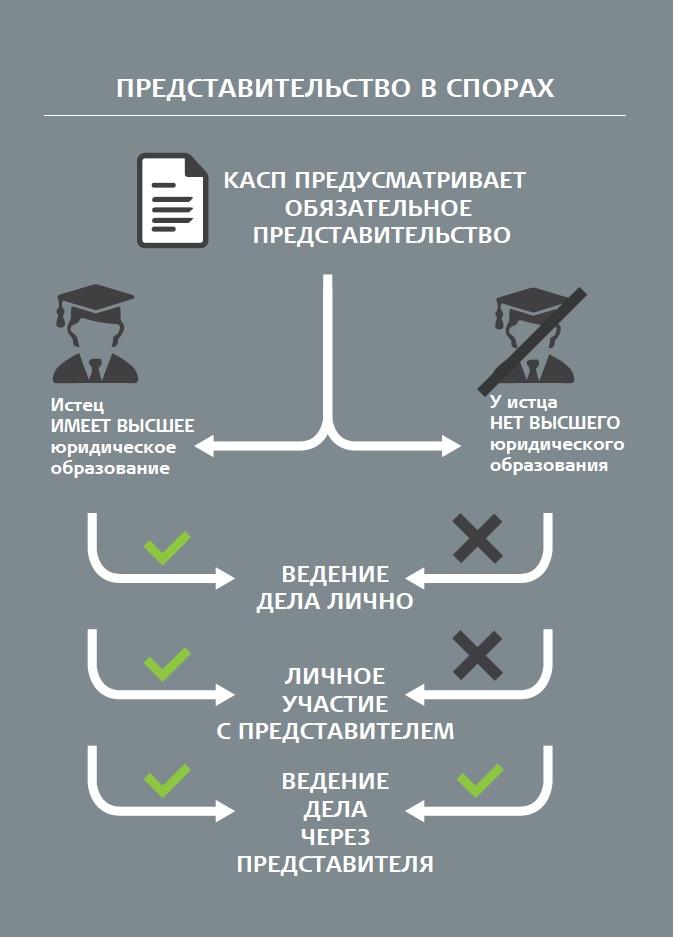 юридическая инфографика 048