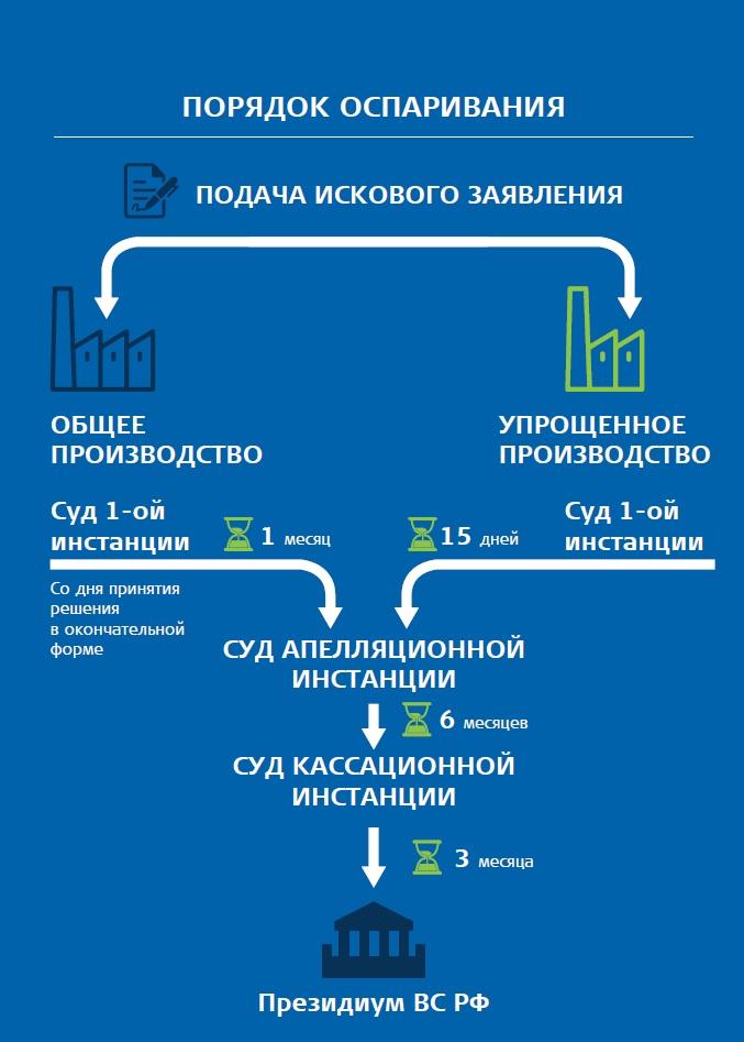 юридическая инфографика 049